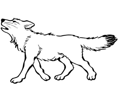 Baby Wolf Page In 2020 Cool Wolf Drawings Wolf Drawing Easy Fox Coloring Page