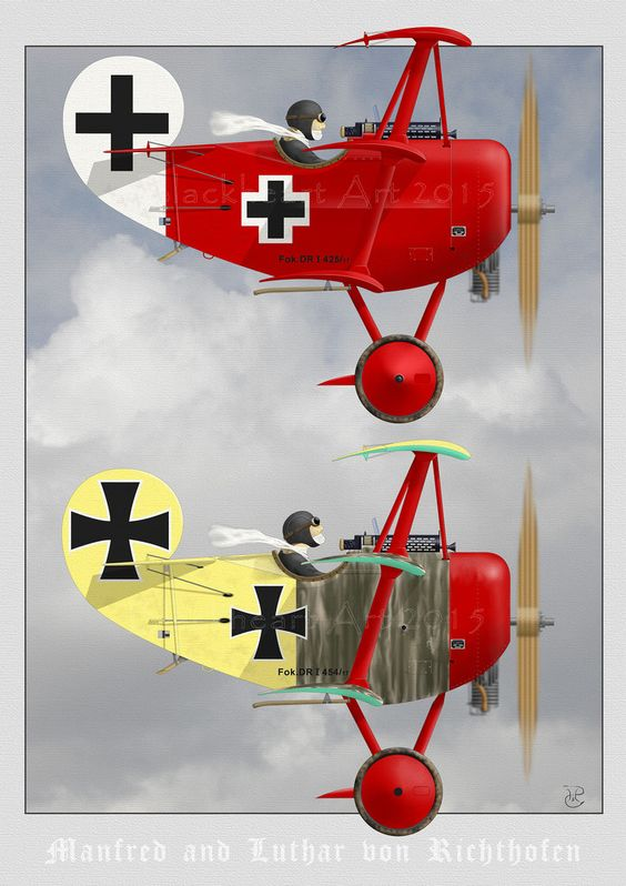The brothers Richthofen in their DR-1's