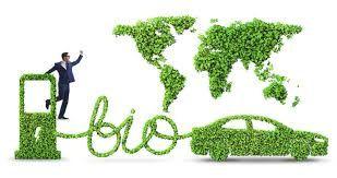 sostenibilidad ambiental biocombustibles - Búsqueda de Google