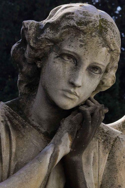 """colorel11: """" © La camara viva San Lorenzo cemetery """""""