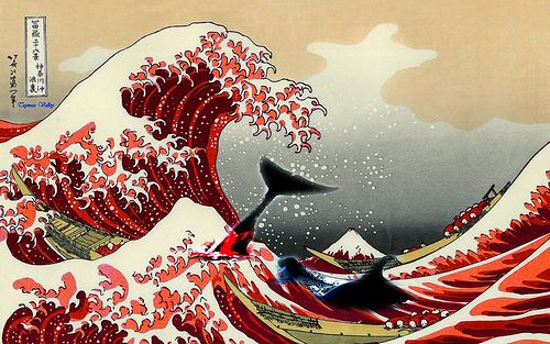 Japan resumes Whaling in it's territory