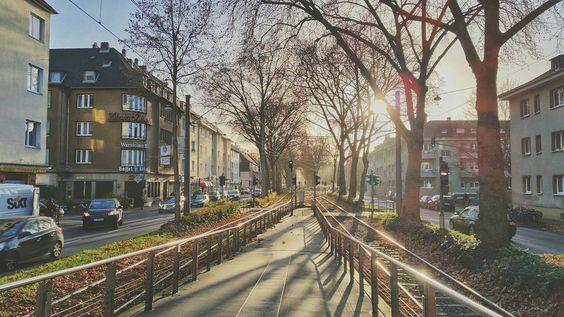 #Winter #Sonne #Schatten ---- #Köln #Linie18 #Linie13 #Sülzgürtel #trees #sun #shadow #light #photography #train
