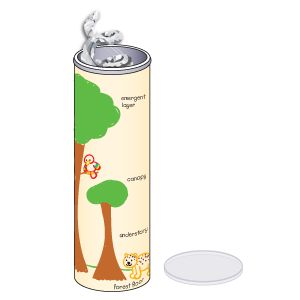 rainforest rain sticks..perfect for two units:weather or rainforest..simple to make,but you have to eat a lot of Pringles