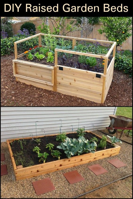 Build Your Own Raised Garden Bed And Improve The Experience Of Growing Your Own Food Diy Raised Garden Raised Garden Beds Diy Raised Garden