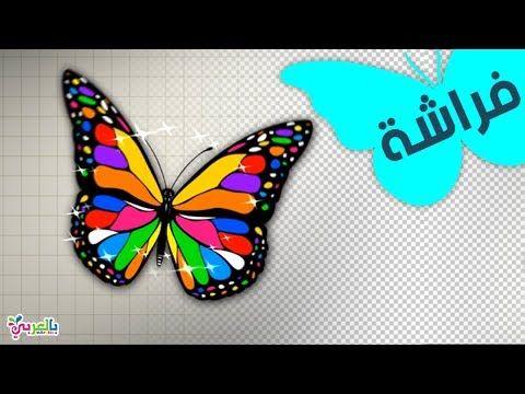 رسم فراشة خطوة بخطوة تعليم الرسم للاطفال Draw Butterfly For Kids Youtube Drawing For Kids Animal Drawings Drawings