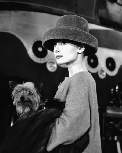 Audrey Hepburn (1929-1993) pictured, carrying a dog, while wearing a fur hat, in a scene from the film 'Funny Face', 1956.