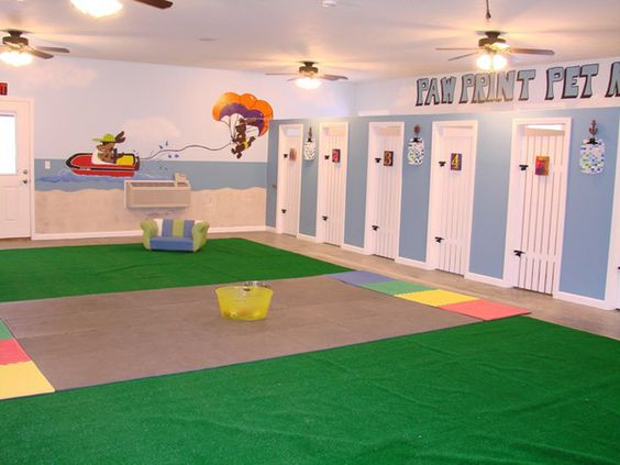 Indoor play play rooms and daycares on pinterest for 5 paws hotel and salon