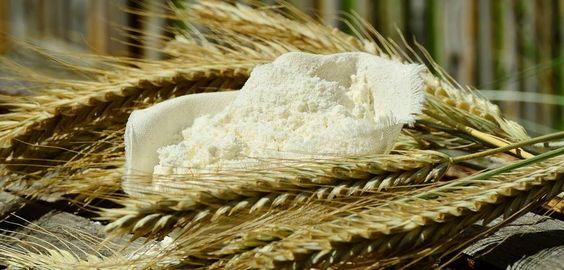 LO SAPEVI CHE… nel mondo si producono circa 650milioni di tonnellate di grano tenero di cui 140 nell'Europa? In Italia si producono circa 3 milioni di tonnellate di grano tenero il cui 66 % viene destinata alla produzione di pane.  #molinobongermino #curiosità #flour #farina #weareinpuglia