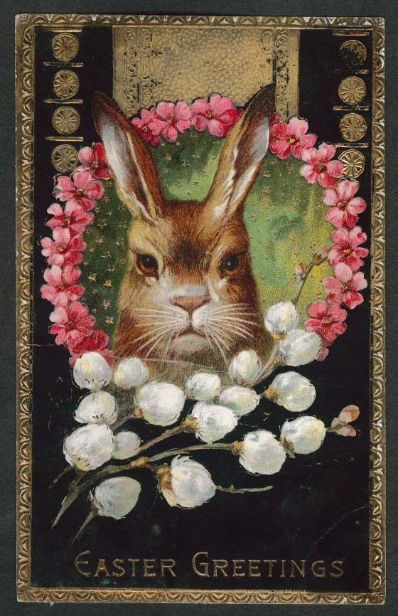 vintage postcard rabbit: