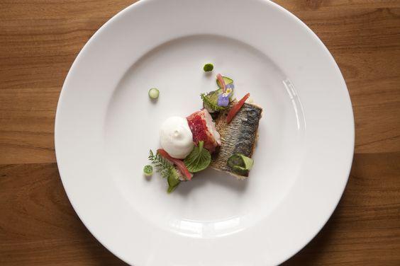 Signature Dish Frank van Enter*, Merlet in Schoorl. Gebakken makreel op een salade van verse augurken, gerookte makreel, curry en 'afsnijdsels' van kreeft. Op het bord vergezeld door een stukje kreeft, sushi van gerookte makreel, augurk en kreeft, bolletjes verse augurk en een schuim en een bouillon van makreel.