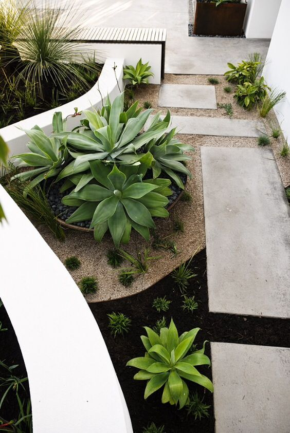 Planting Ideas Front Yard Perth Front Garden Landscaping Pinterest Y