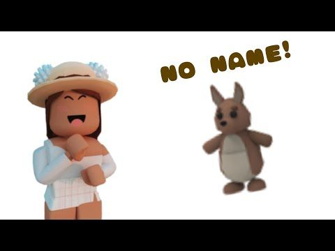 How To Add No Name On A Pet Or Avatar In Adopt Me Roblox Youtube In 2020 Adoption Pets Avatar