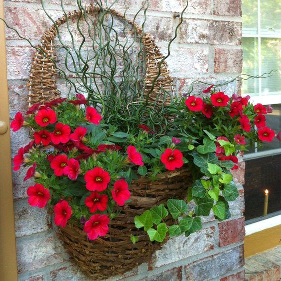 Hanging Basket On Fence: Wall Basket, Baskets And Flower On Pinterest