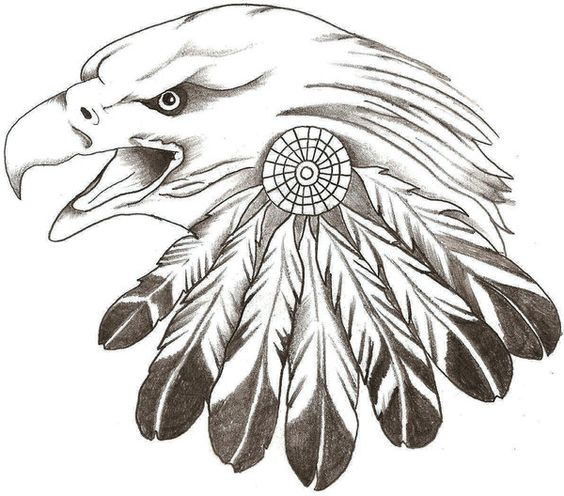Gallery For gt Eagle Feather Designs