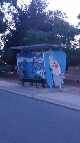 I love the way they have painted this bustop shelter! Perth, Western Australia.