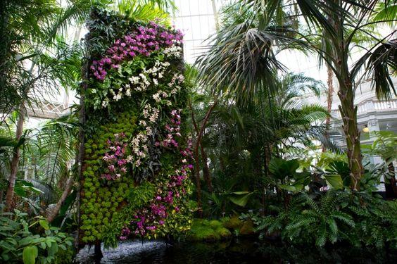 jardim vertical autocad:Muro verde