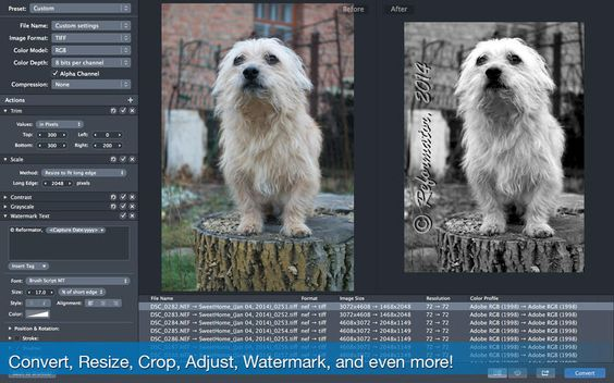 PhotoMill Batch Convert, Edit Metadata, Rename, Resize, Watermark