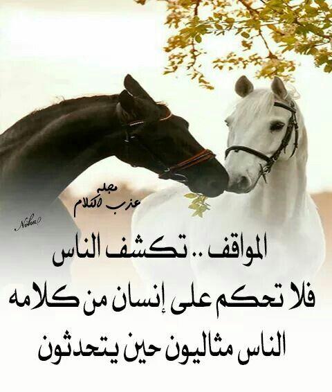الناس تكشف معادن الناس Quotes Wisdom Horses