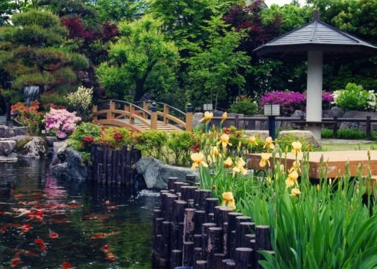 錦鯉会館(展示棟、観賞棟)と錦鯉公園からなり、観賞棟の水槽には優秀鯉が約160匹、庭園の池にはオーナー鯉など約80匹が放流されています。