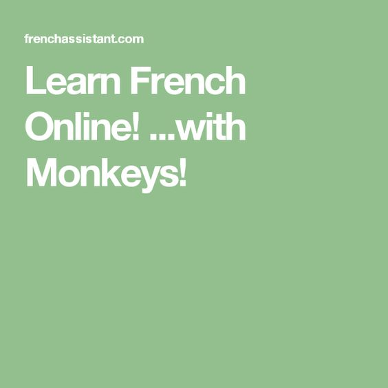 Learn French Online! ...with Monkeys!