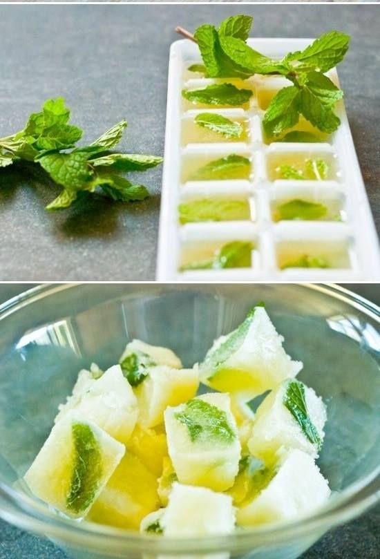 Minzen und Zitronen Eiswürfel für Sommerdrinks