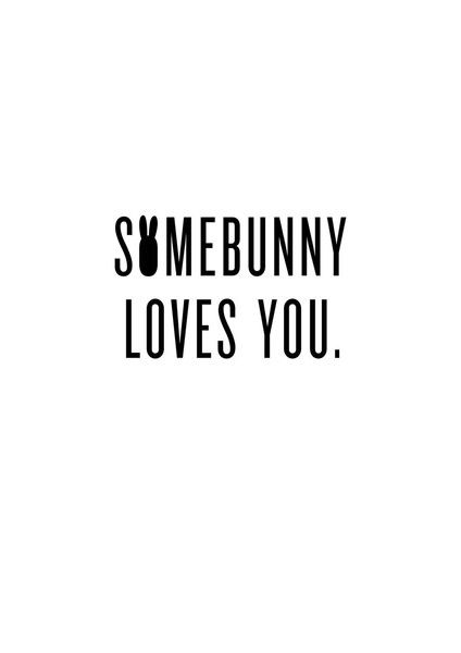 somebunny loves you // Monomini:
