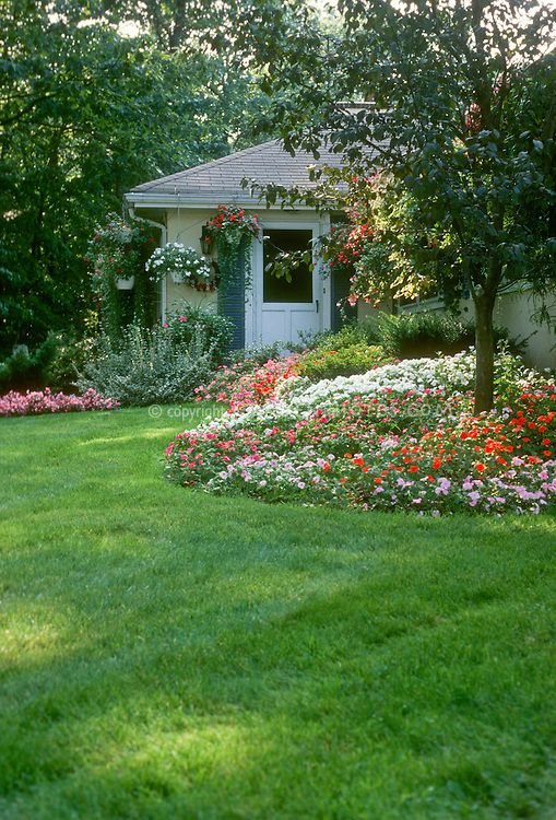 Image Result For Shade Garden Mass Planting With Images