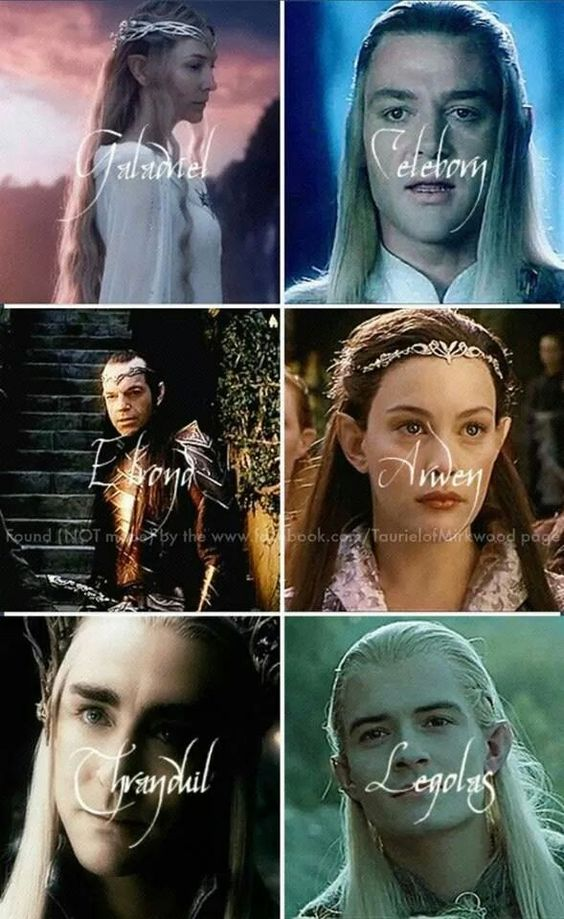 LOTR / The Hobbit. The top is Galadriel and her husband Celeborn who live in Lothlorien. Their daughter married Elrond. Arwen is Elrond's daughter. Rivendell is their home. The bottom tier are the Mirkwood elves. Left is the Elvenking Thranduil and his son Legolas.