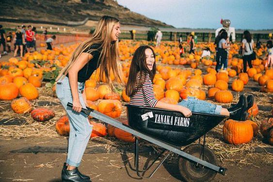 Fall // pumpkin patch // friends // wheelbarrow