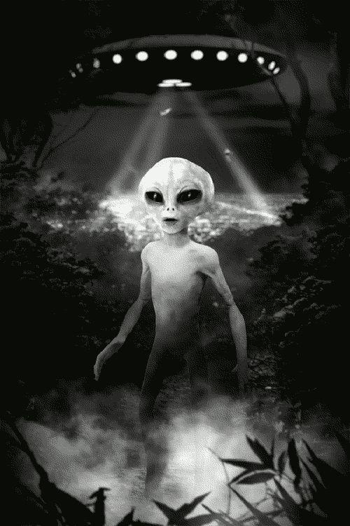 Abducciones extraterrestres. ¿Realidad o mentira colectiva? 658a984ca404b9fa9e19e22421688d5c