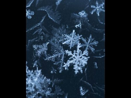 Snowflakes, up-close and personal