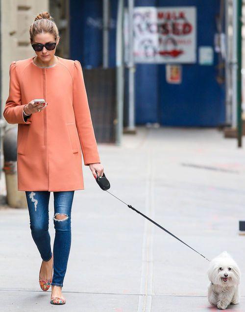 Zum Gassy gehen geht Frauchen mit super viel Stil!!