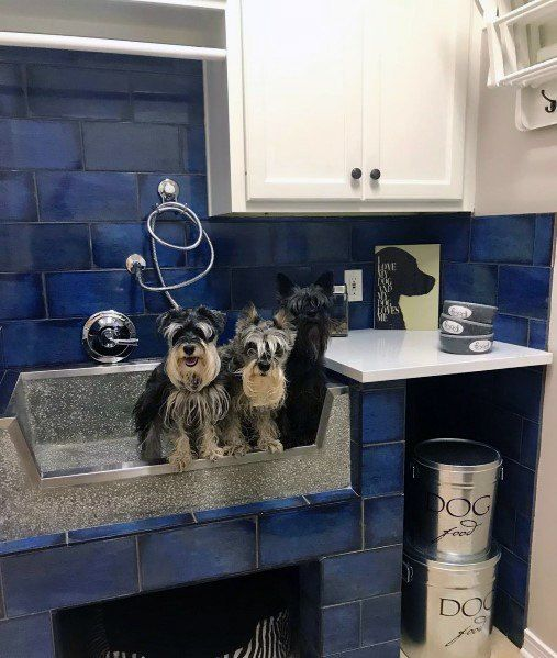 Top 60 Best Home Dog Wash Station Ideas Canine Shower Designs Dog Washing Station Dog Rooms Dog Wash