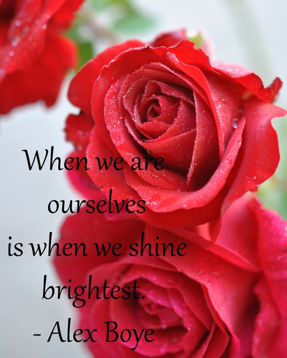 When we are ourselves is when we shine brightest - Alex Boye
