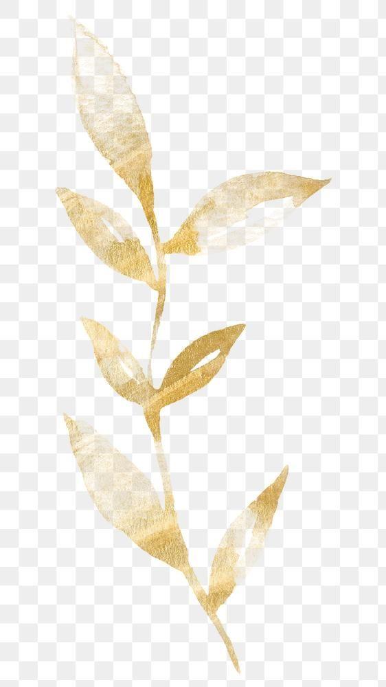 Luxury Golden Leaf Sticker Png Premium Image By Rawpixel Com Adj Leaf Illustration Golden Leaves Png