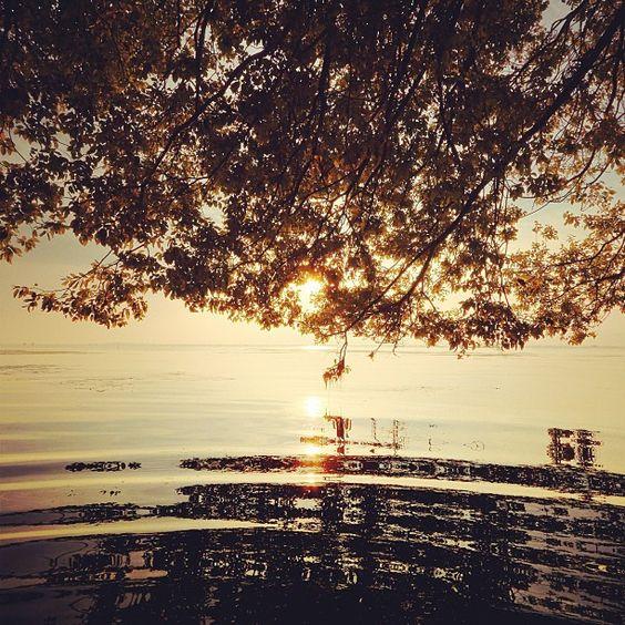 najii66's photo: sunrise