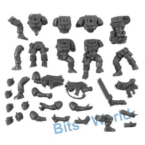 40k Bits Warhammer 40K 5 Space Wolves Scout Heads