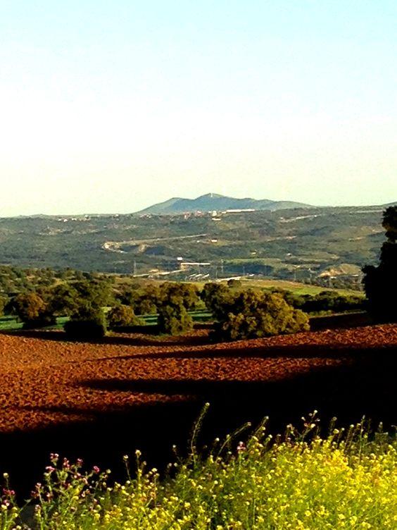 Primavera en Castilla La Mancha
