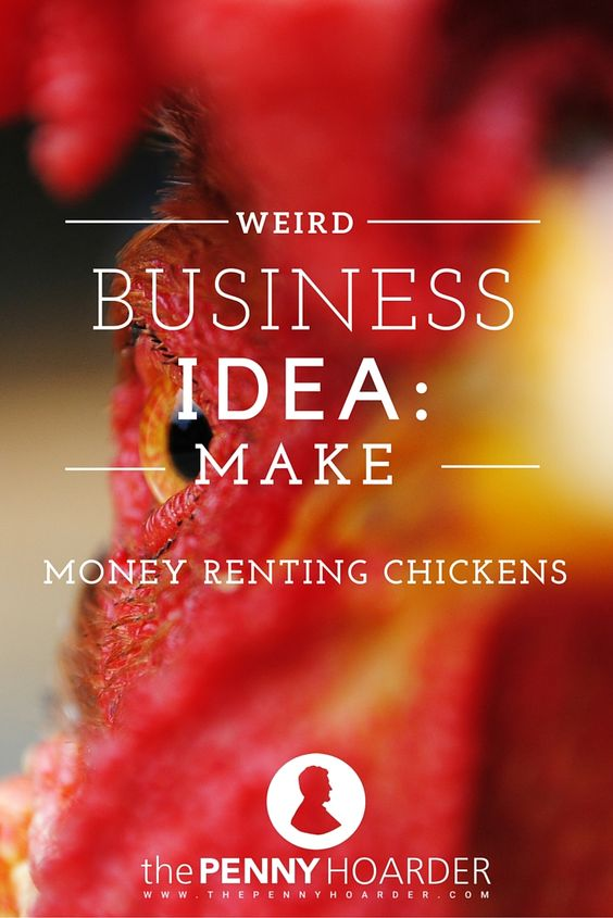 Who could say no to fresh eggs from their backyard? Would-be farmers often want to test this idea before committing, and that's where rent-a-chicken services come in. Here's how to set up this unusual but in-demand business. - The Penny Hoarder http://www.thepennyhoarder.com/make-money-renting-chickens/