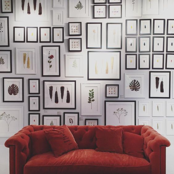 """""""Gallery wall for the win #hpmkt @naturalcuriosities"""""""