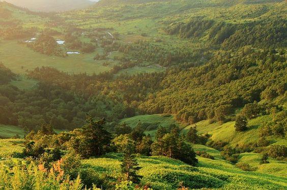 ここがグンマー?渋峠から見た「芳ヶ平」はジオラマのような驚きの絶景 | RETRIP