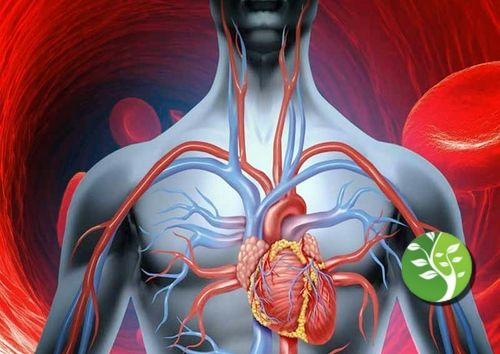 Una sanguínea mejor naturales remedios para circulación