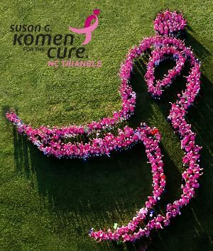 Join me at the 2013 Susan G. Komen Race for the Cure!