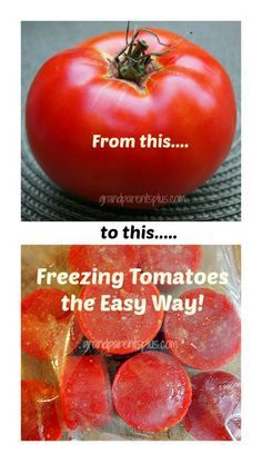 Freezing Tomatoes the Easy Way! No skinning necessary! No waste. Core then place in magic bullet skin and all! Freeze in muffin tins for yummy sauces in the winter.