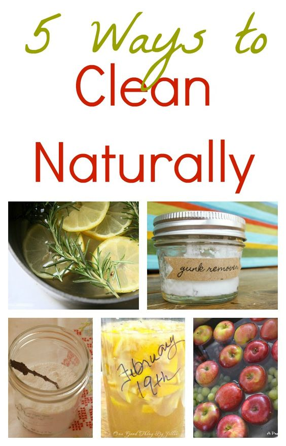 A list of 5 DIY natural cleaners from Infarrantly Creative.