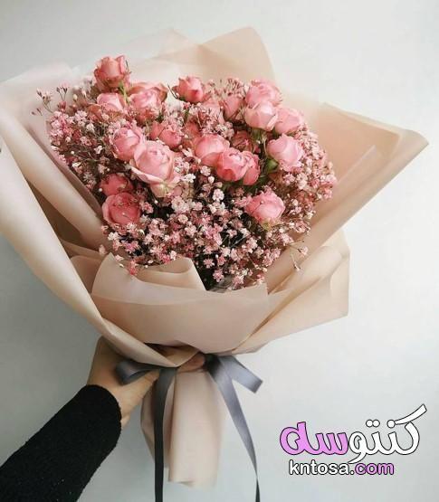 هدايا ورد طبيعي اشكال باقات ورد طبيعي اشكال باقات ورد غريبه باقات ورد هدايا انستقرام Beautiful Bouquet Of Flowers Flowers Bouquet Boquette Flowers