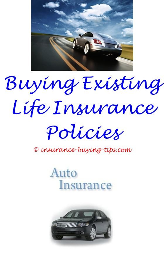 Discount Auto Insurance Buy Health Insurance Pet Health