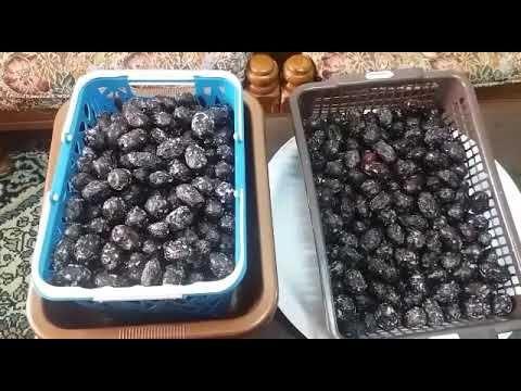 اسهل الطرق لكبس الزيتون الأسود وطعم روووووووعه Youtube Food Blueberry Fruit
