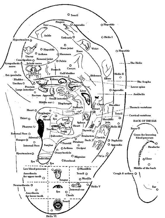 auricular map