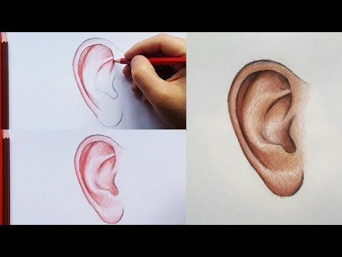 Kuru Boya Kulak Cizimi Nasil Yapilir Youtube Drawings Youtube